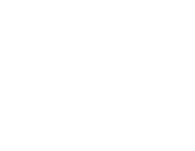 Logo Federfussball footer